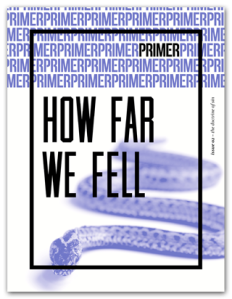 Primer-issue-2-COVER