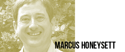 issue-06-marcus-honeysett